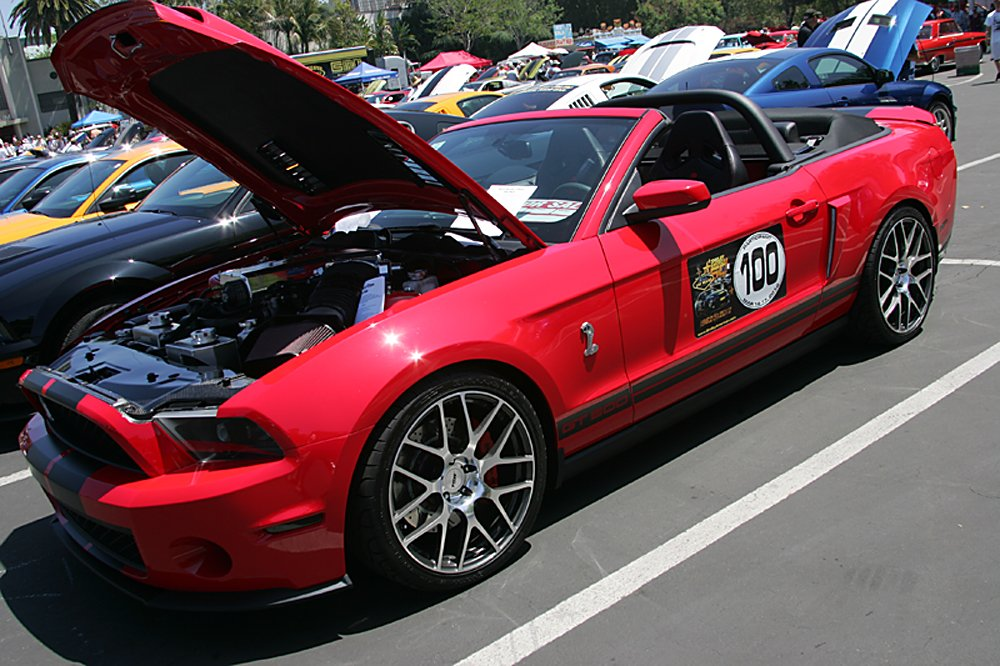 ford-cobra-shelby-reunion-093