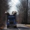 thump_truck_kenworth_drag_racing_dump_truck77