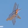 F-22 Raptor zx MIKE0154 copy