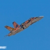 FA-18 Hornet zx MIKE0035 copy