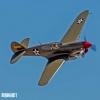 P-40 zx MIKE0841 copy