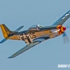 P-51D Mustang zx MIKE0231 copy