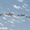 (r-l_ P47 P51a and D Mustangs zx MIKE0010 copy