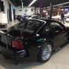 3Dog Garage 12
