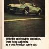sports_car_graphic_0013