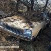 Car Lot Abondoned Hot Rods 036
