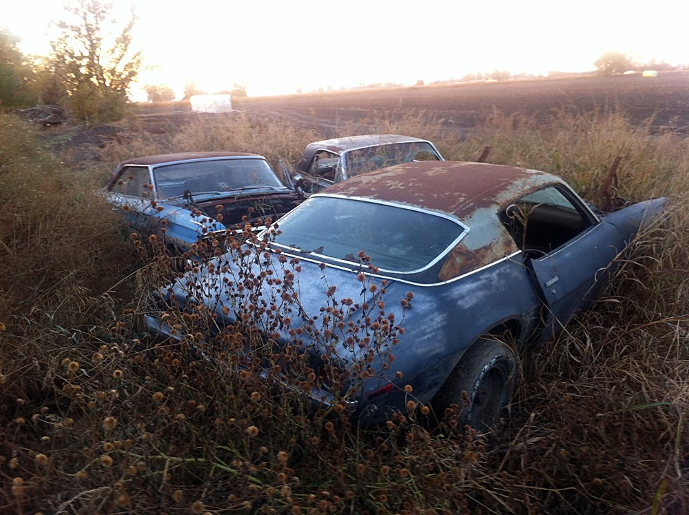 Barn Find Stash Of Cars 013