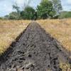 Big Rock Illinois Plowing 46