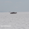 Bonneville Speed Week 2017 Sunday Chad Reynolds-094
