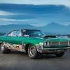 Chuck Stubeck Road Runner33