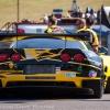 corvette_racing_alms_lime_rock_201203