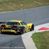 corvette_racing_alms_lime_rock_201219