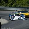 corvette_racing_alms_lime_rock_201240