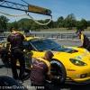 corvette_racing_alms_lime_rock_201281