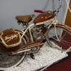 denzer_collection_motorized_bikes50