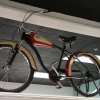 denzer_collection_motorized_bikes62