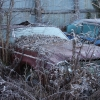 Gates Savalge Classic Cars 47