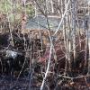 Gates Salvage Hardwick Vermont 11