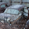 Gates Auto Salvage 500 dollar sale 20