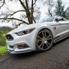 Hurst Elite Series Sweepstakes Mustang 17