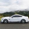 Hurst Elite Series Sweepstakes Mustang 18
