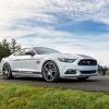 Hurst Elite Series Sweepstakes Mustang 22