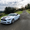 Hurst Elite Series Sweepstakes Mustang 30