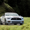 Hurst Elite Series Sweepstakes Mustang 34