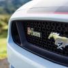 Hurst Elite Series Sweepstakes Mustang 40