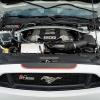 Hurst Elite Series Sweepstakes Mustang 53