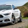 Hurst Elite Series Sweepstakes Mustang 58