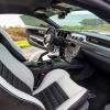 Hurst Elite Series Sweepstakes Mustang 66