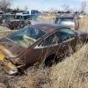 Watts Repair and Salvage junkyard13