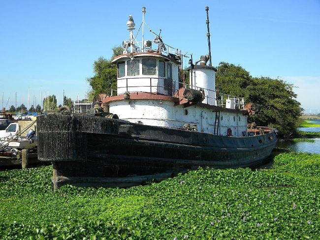 Bass boat for sale in ga, wooden trawler yachts for sale, small tug boats for sale in australia ...