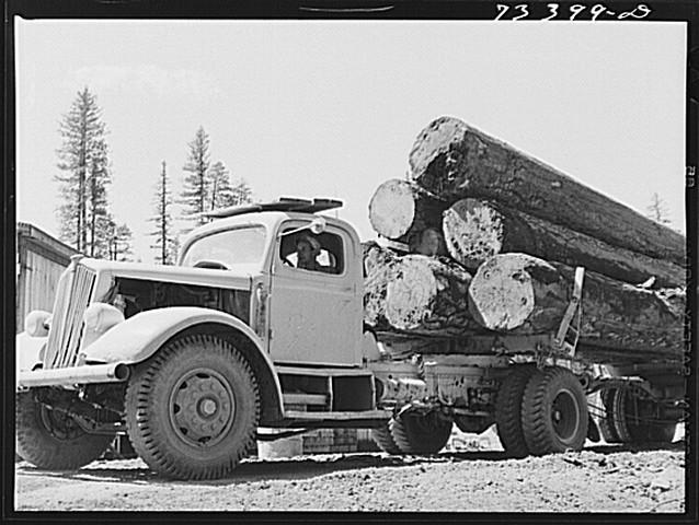 loaded logging truck