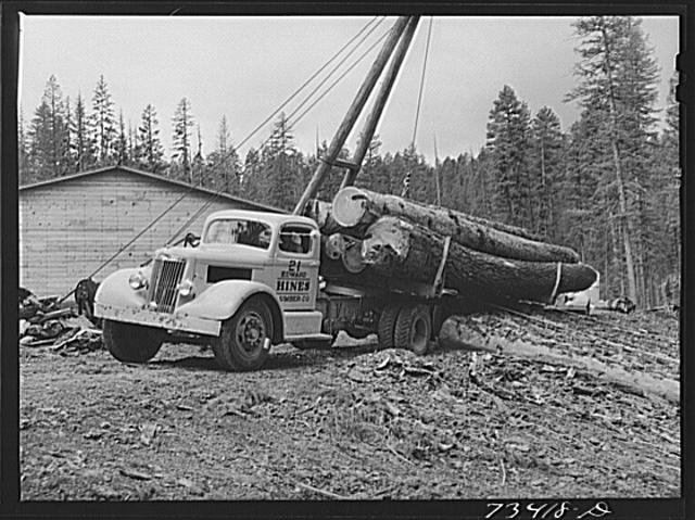 Logs being loaded