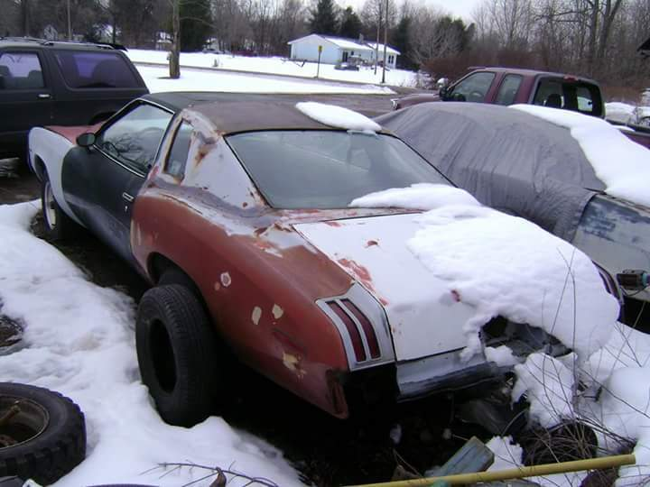 1975 grand AM 455 the pissed off GrandMA Fetch?id=1093632&d=1458795007&type=full