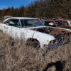 Roadtrippin to junkyard65