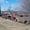 Roadtrippin to junkyard82