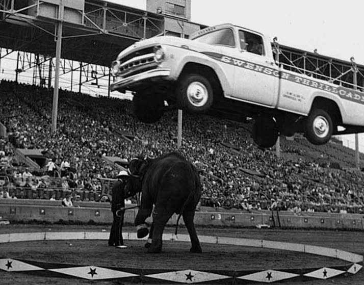 Epic Photo: A 1957 Ford Truck In Flight Over an Elephant