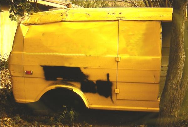yellow-rear