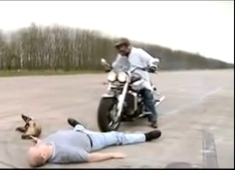 This Tongue In Cheek Video About Triumph Motorcycle Manufacturing Is Absolutely Hilarious