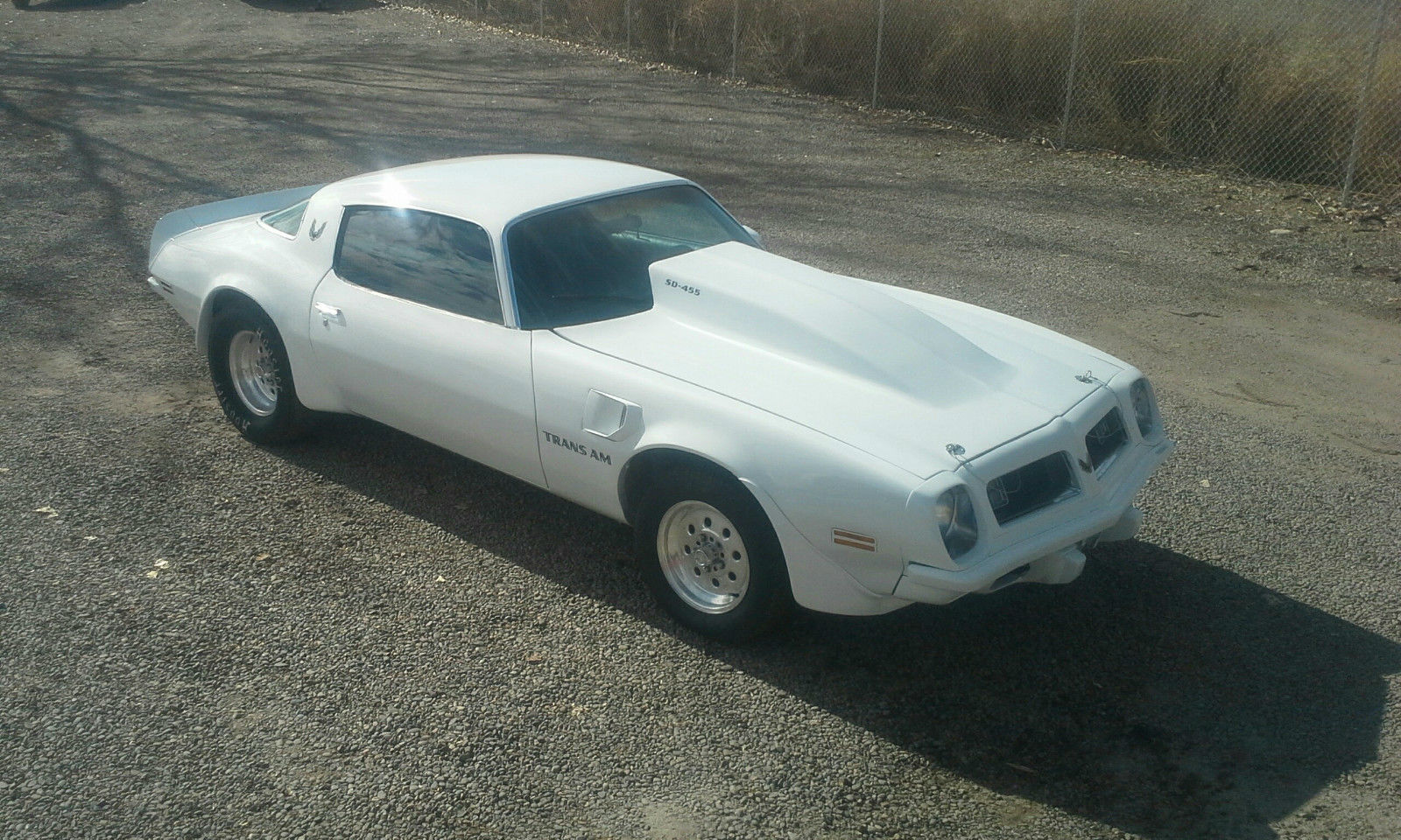Pro Street 1975 Pontiac Firebird Trans Am Click Here To See The Ebay Listing For This