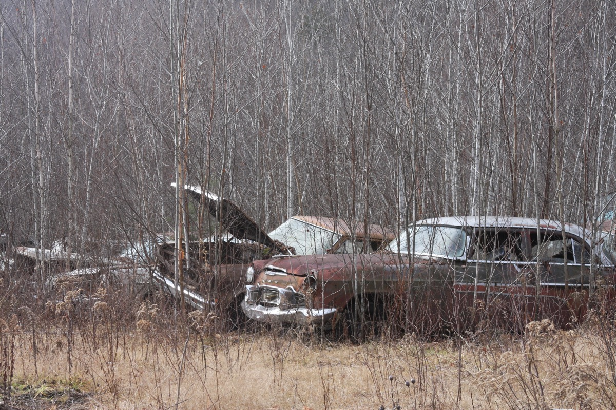 Gates Auto Salvage Tour: More Automotive Archeology From The Woods Of Vermont