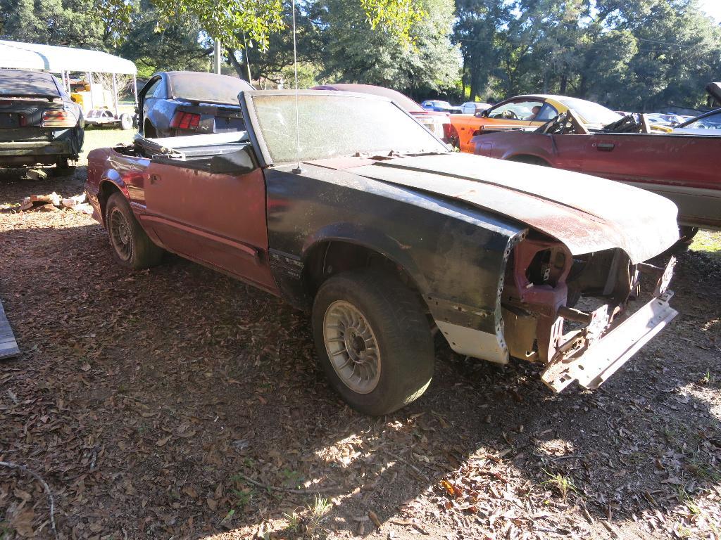 Junk Yards Jacksonville Fl >> Bangshift Com A Jacksonville Florida Mustang Only Junkyard Is