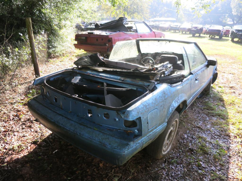 BangShift com A Jacksonville, Florida Mustang-Only Junkyard