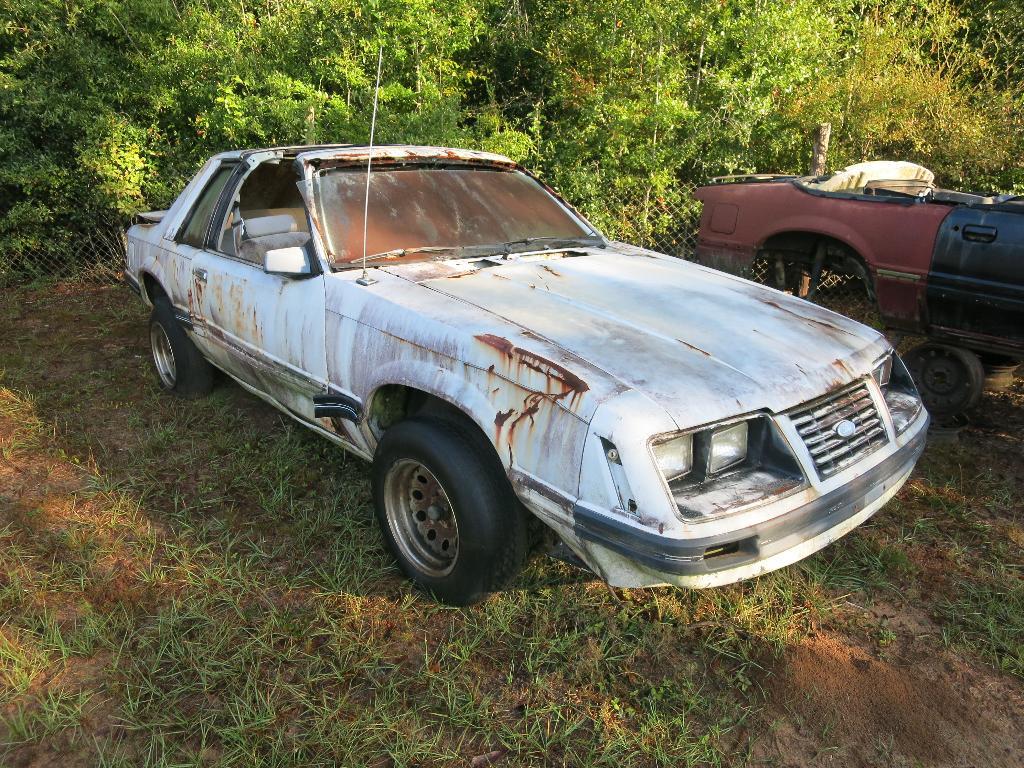 BangShift.com A Jacksonville, Florida Mustang-Only Junkyard Is ...