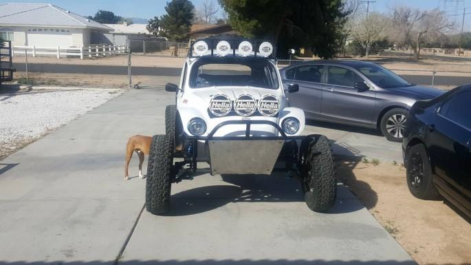 Baja bug -3