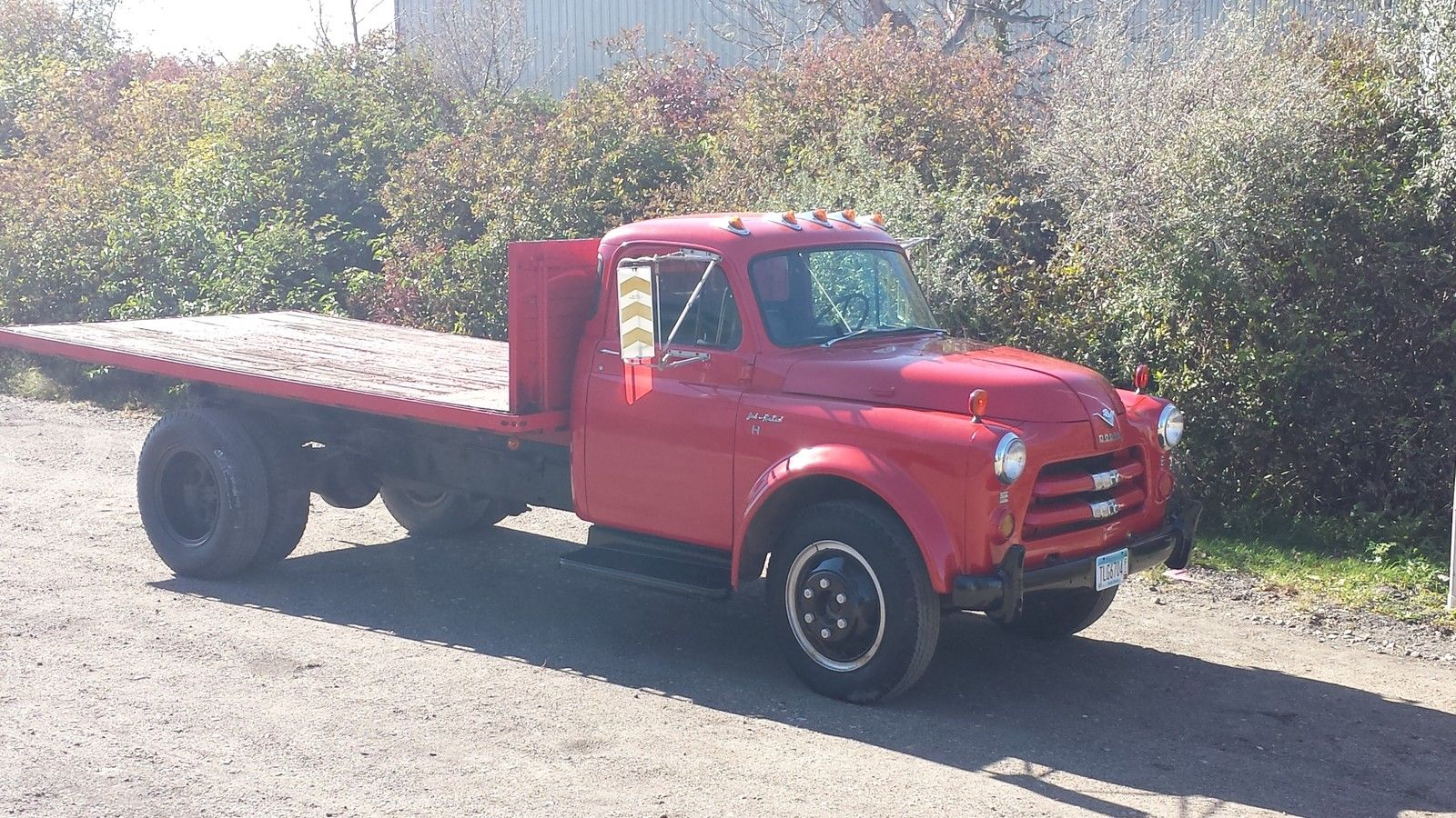 just what brian needs a 1954 dodge job rated truck with a 331 hemi. Black Bedroom Furniture Sets. Home Design Ideas