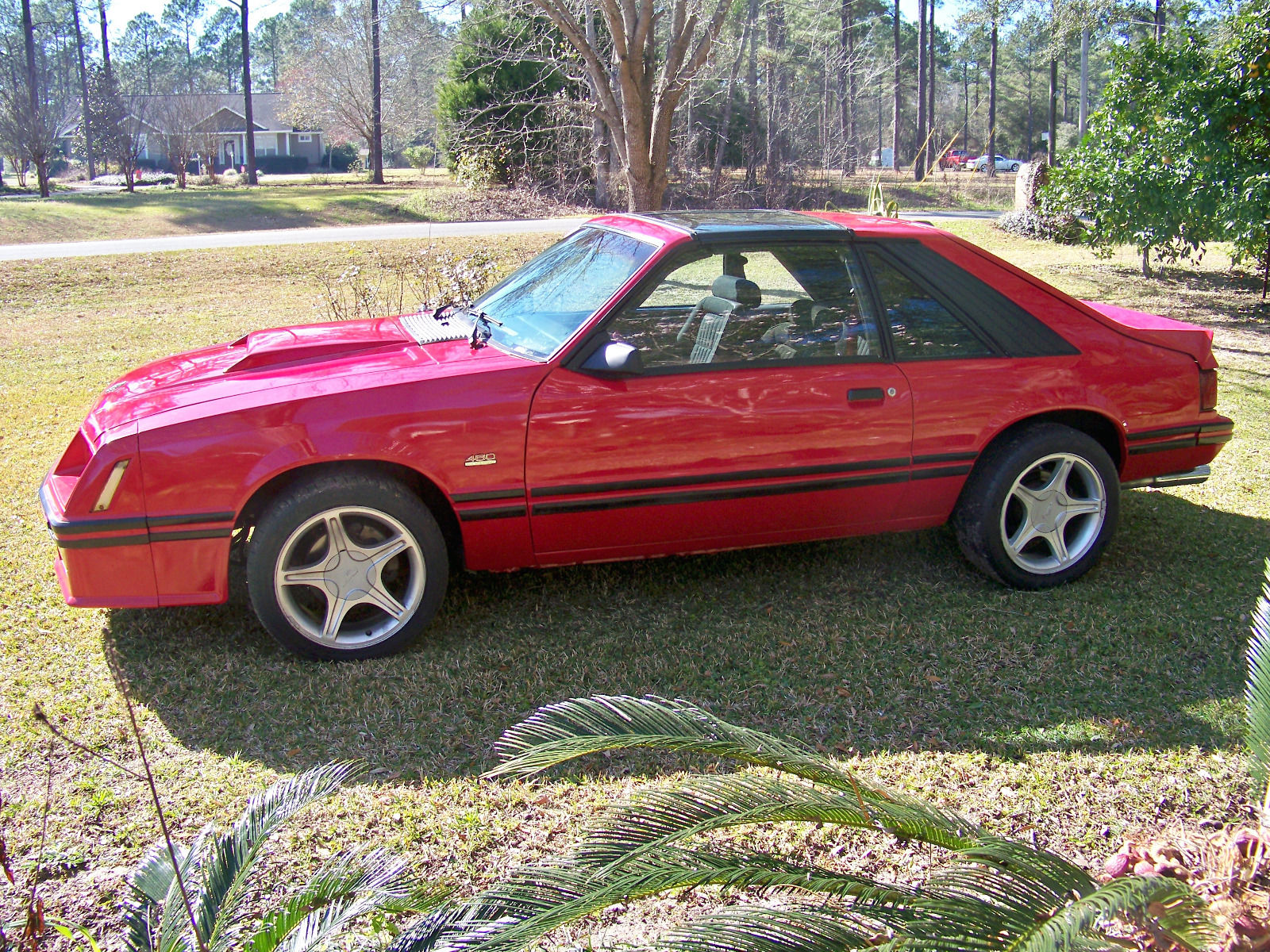 1982 Mustang Gt >> Bangshift Com This 1982 Ford Mustang Gt Isn T Grandpa Fresh